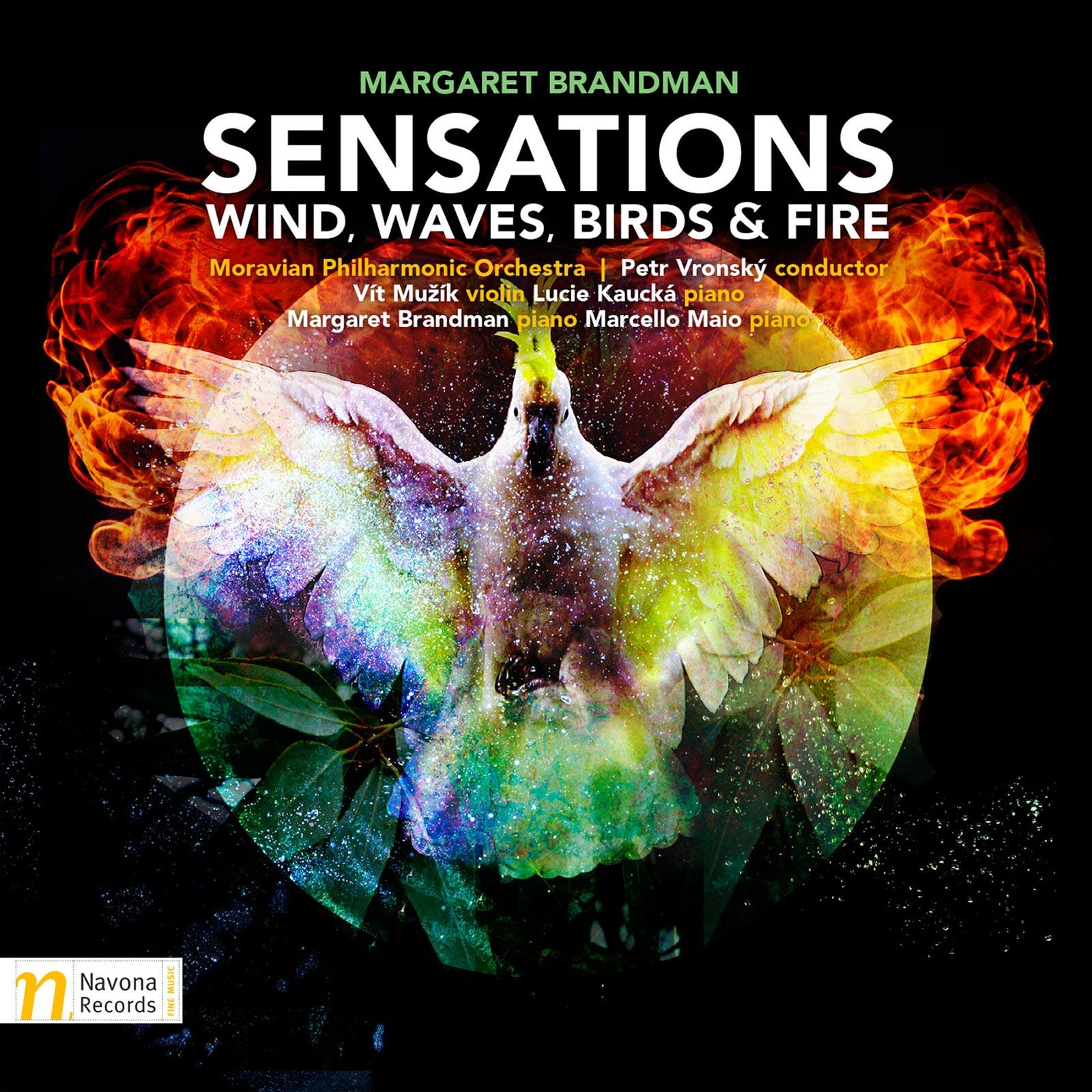 Sensations – Wind, Waves, Birds & Fire