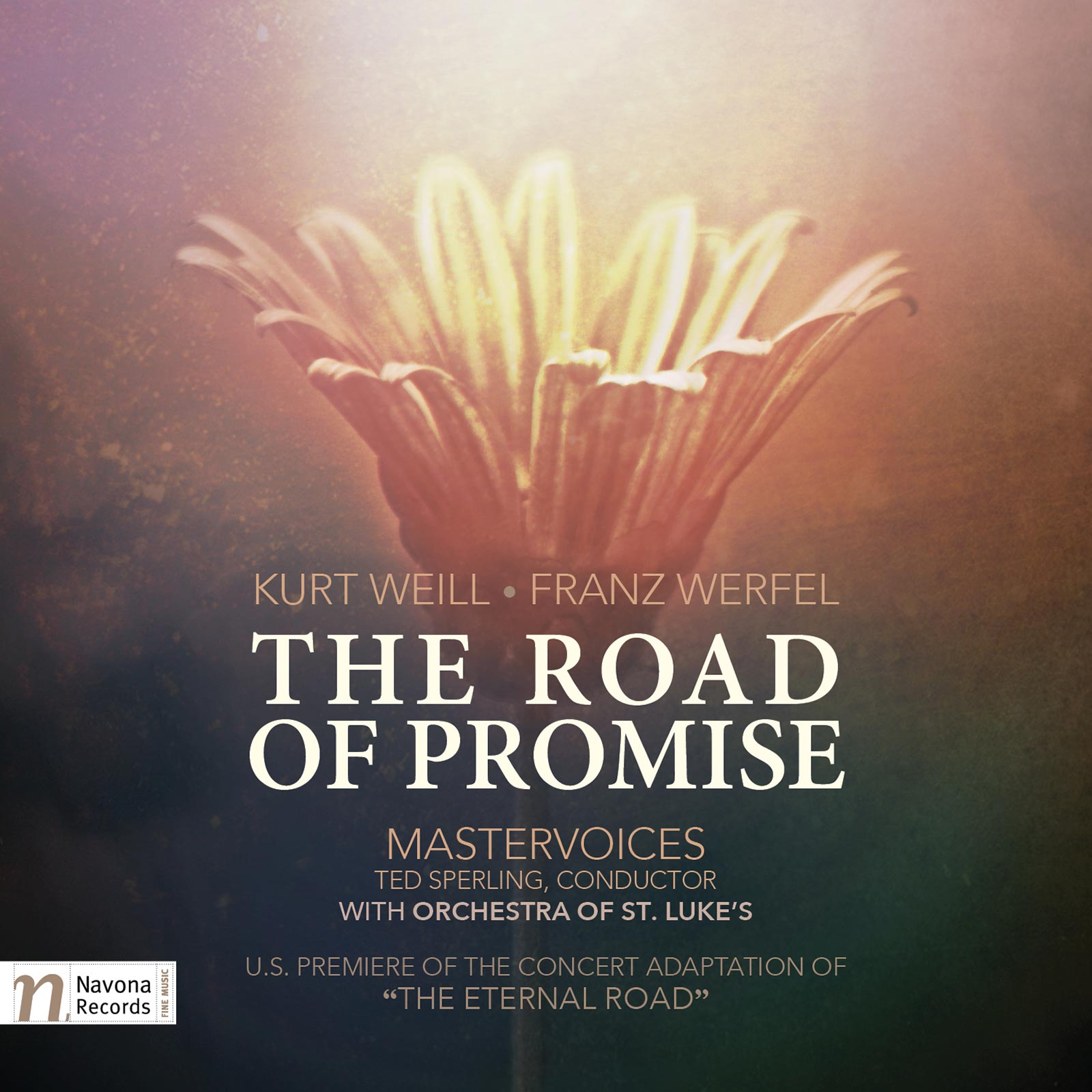 The Road Of Promise